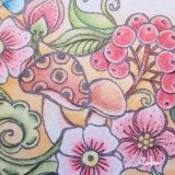 ダーウェントアーチスト【レビュー】Rita Bermanのフリーダウンロード塗り絵 Bloom Mandala
