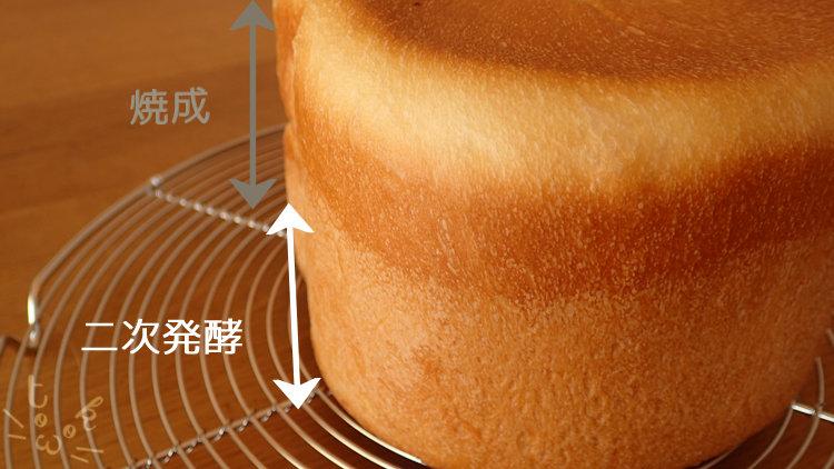 ねこ食パンの側面の色が3層にわかれている