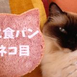 どこから見てもピンクなねこ食パン、続いて2ネコ目