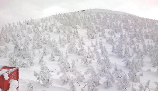 温泉療養という名のただのスキー旅行