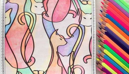 蛍光色鉛筆の試し塗り