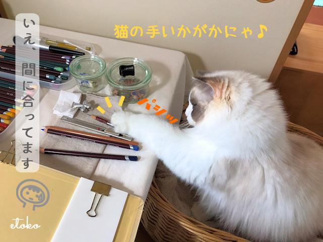 作業机横のかごから机上の色鉛筆へ手を伸ばすラグドール