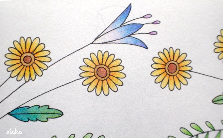 コスミック出版の色鉛筆で花をグラデーションになるよう塗っている