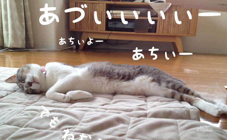 2012年に住んでいた家のリビングでサバトラソックスの猫が暑そうに寝転がっている