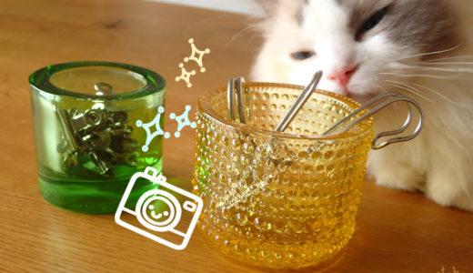 猫もキャンドルホルダーが気になる?