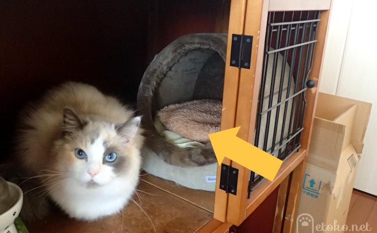 キャットケージの内にある猫ベッドの中に蓄熱式エコ湯たんぽが置かれている
